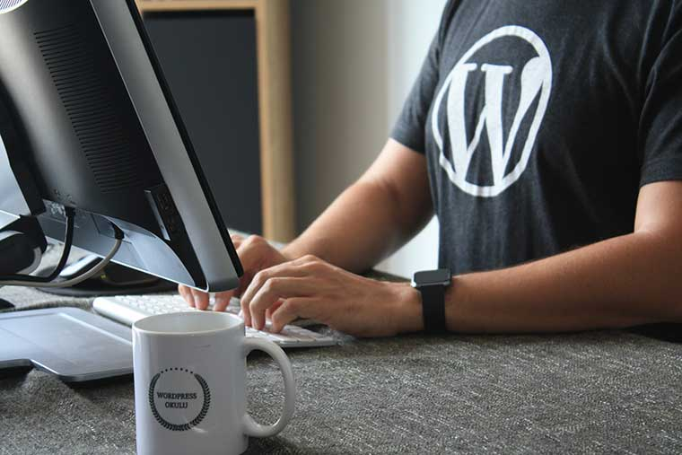 Custom WordPress Design Manpower Planning